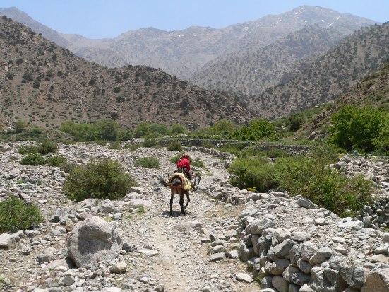 Aazab Aventure, trek au Maroc