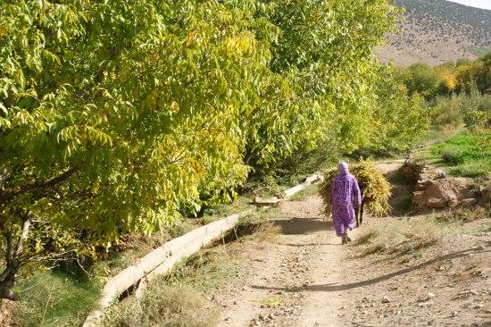 Le Maroc en famille - trek itinérant de gite en gite au coeur de la vallée des Ait Bougmez