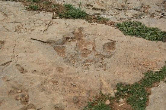 En randonnée au Maroc, découverte des traces des dinosaures dans la vallée des Ait Bougmez