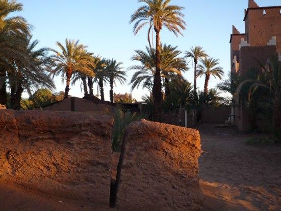 Randonnée le long de l'oued Draa au Maroc